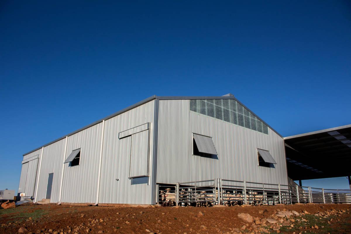 ABC Sheds shearing shed