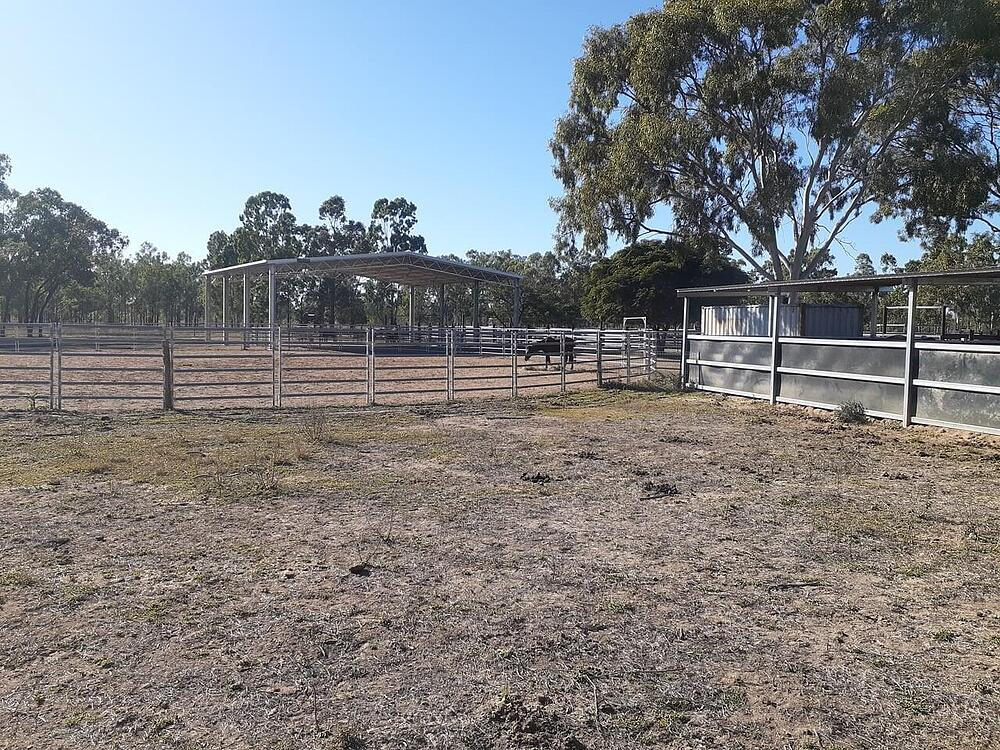 David Stuart's arena cover and horse training grounds