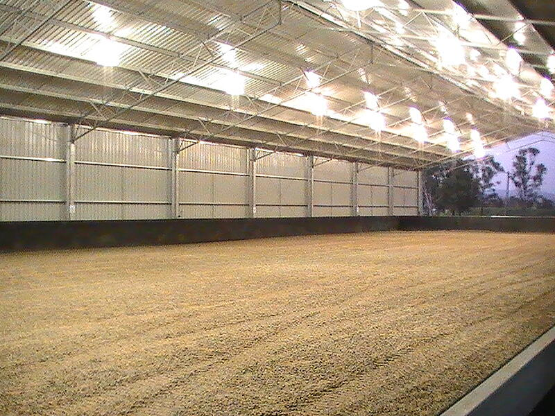 Dressage arena with lights