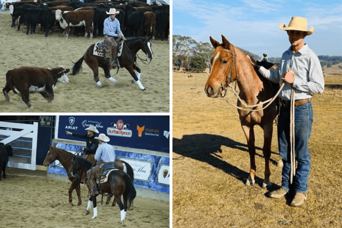 Abe Graham Performance Horses