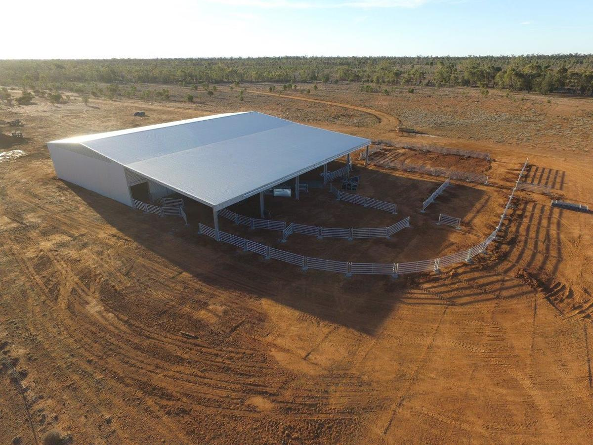 Bird's eye view of shearing shed in Westmar