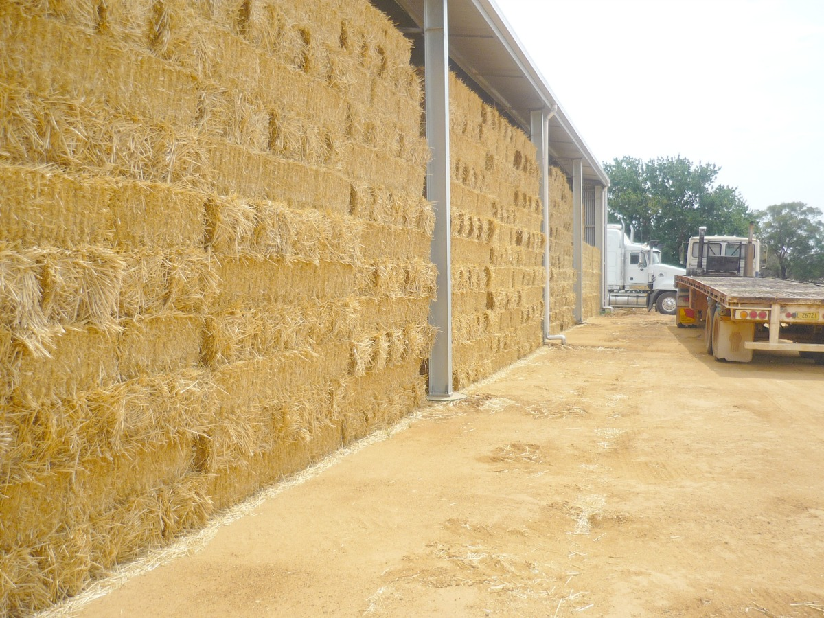 Side of hay shed - Cowra