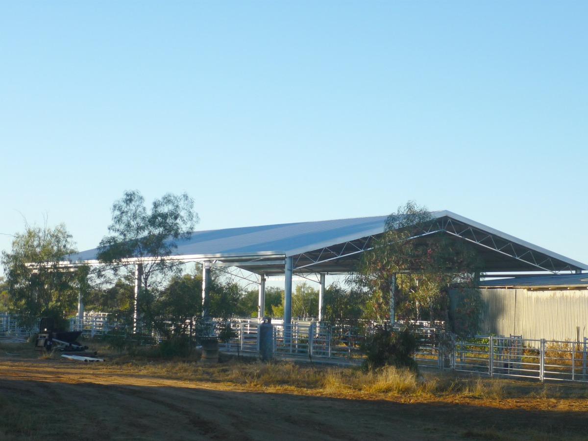 Slanted view of yard cover in Nyngan