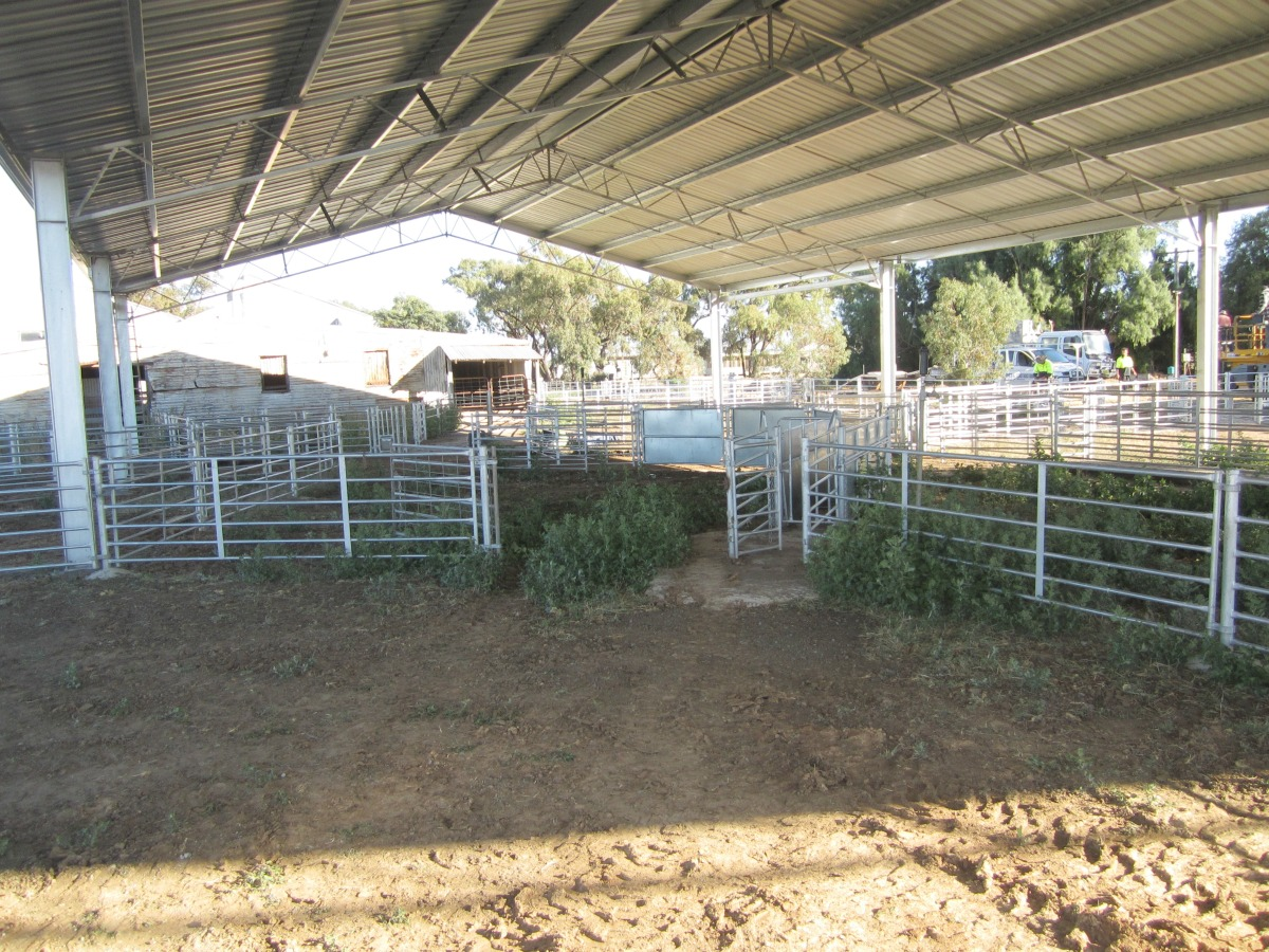 Inside of yard cover in Nyngan