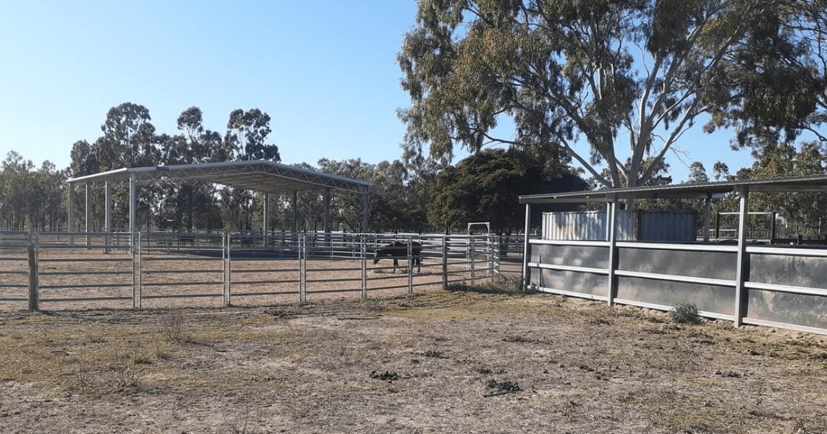 A custom dressage arena cover in Nebo, QLD